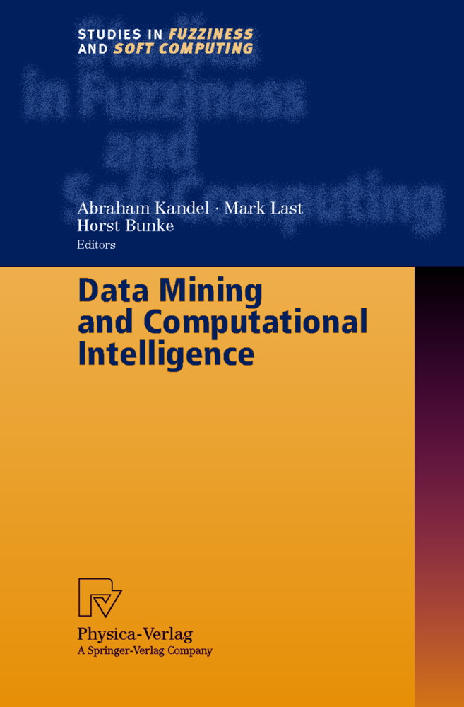 Data Mining and Computational Intelligence als Buch