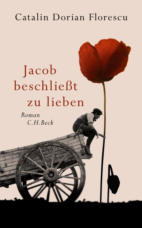 Jacob beschließt zu lieben als Buch