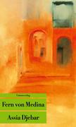 Fern von Medina als Taschenbuch