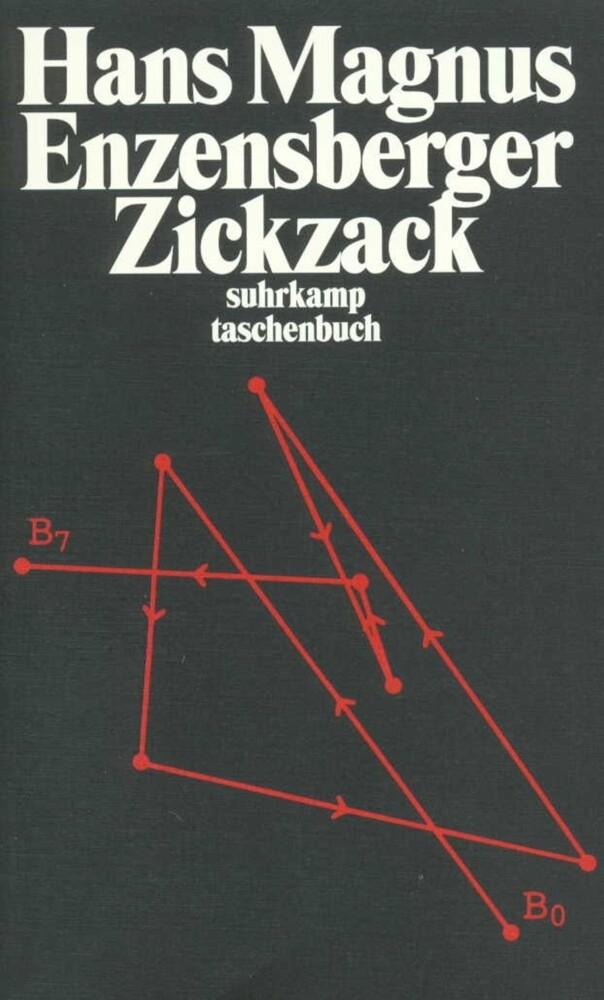 Zickzack als Taschenbuch