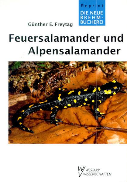 Feuersalamander und Alpensalamander als Buch
