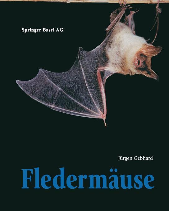 Fledermäuse als Buch