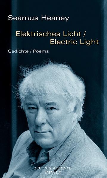 Elektrisches Licht / Electric Light als Buch
