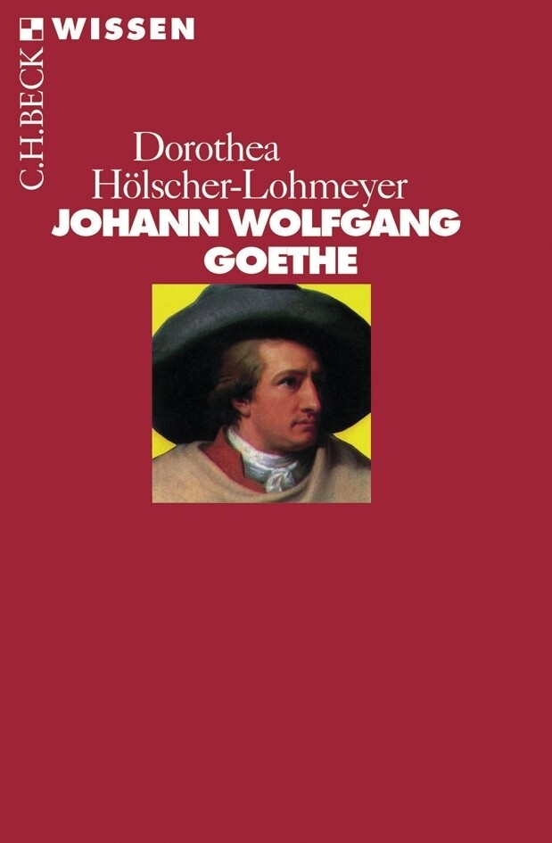 Johann Wolfgang Goethe als Taschenbuch