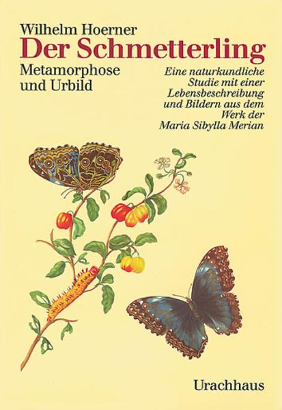 Der Schmetterling als Buch