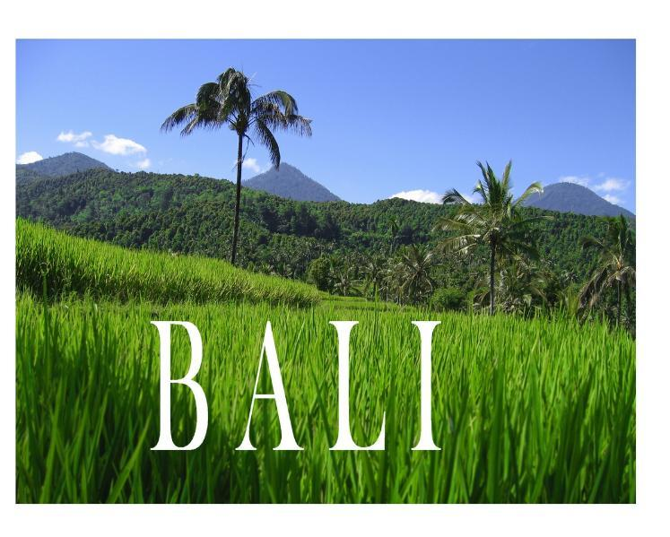 Bali - Ein Bildband als Buch