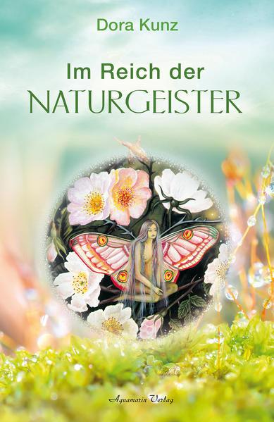 Im Reich der Naturgeister als Buch