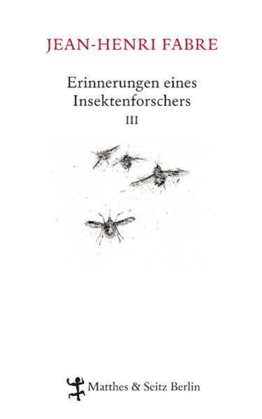 Erinnerungen eines Insektenforschers 03 als Buch von Jean-Henri Fabre, Heide Lipecky, Clemens J. Setz, Julia Voss