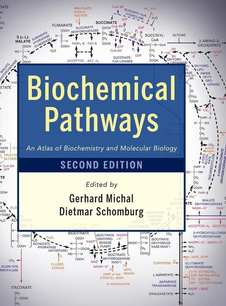 Biochemical Pathways als Buch von Gerhard Michal, Dietmar Schomburg
