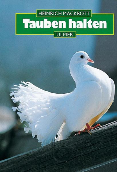 Tauben halten als Buch