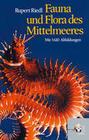 Fauna und Flora des Mittelmeeres
