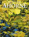 Ahorne