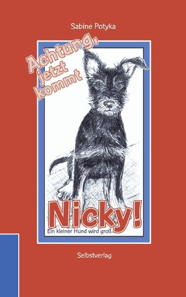 Achtung, jetzt kommt Nicky! als Buch