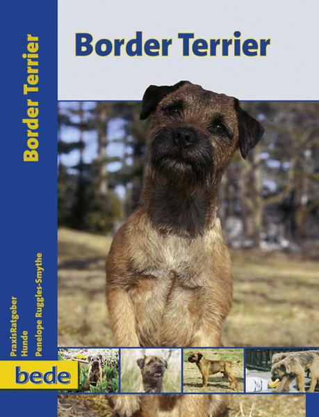 PraxisRatgeber Border Terrier als Buch