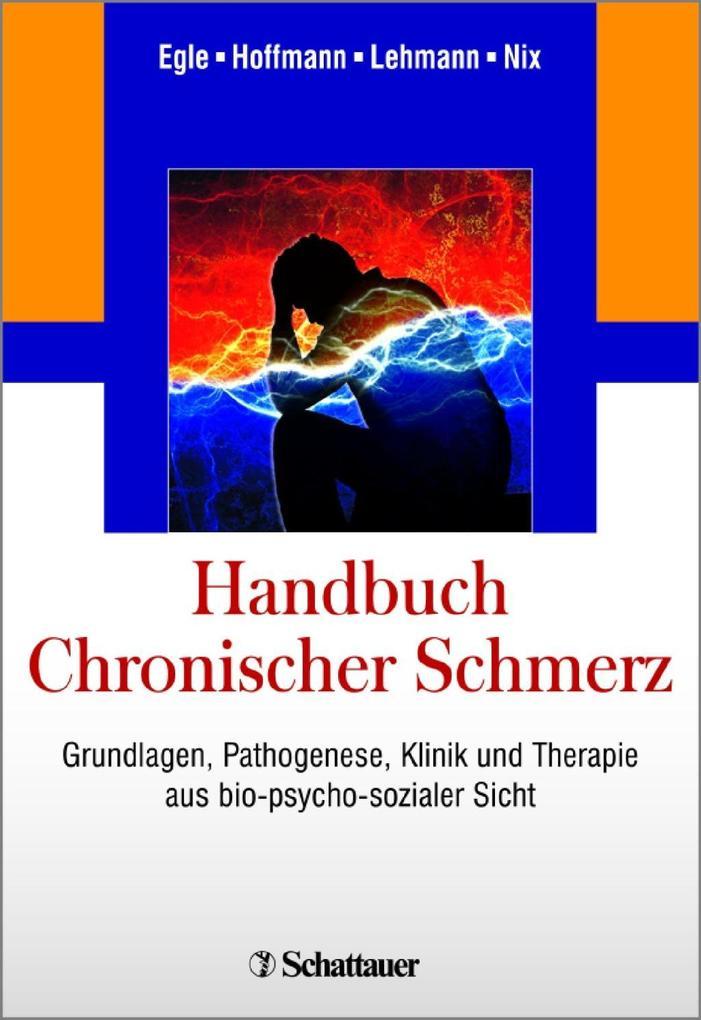 Handbuch Chronischer Schmerz als Buch