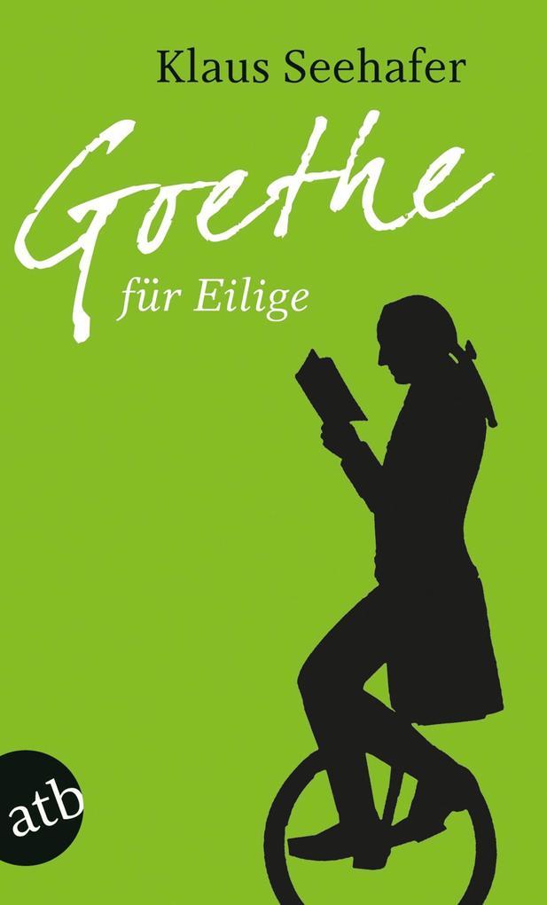 Goethe für Eilige als Taschenbuch