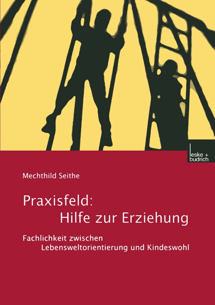 Praxisfeld: Hilfe zur Erziehung als Buch