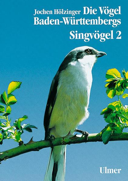 Singvögel 2 als Buch