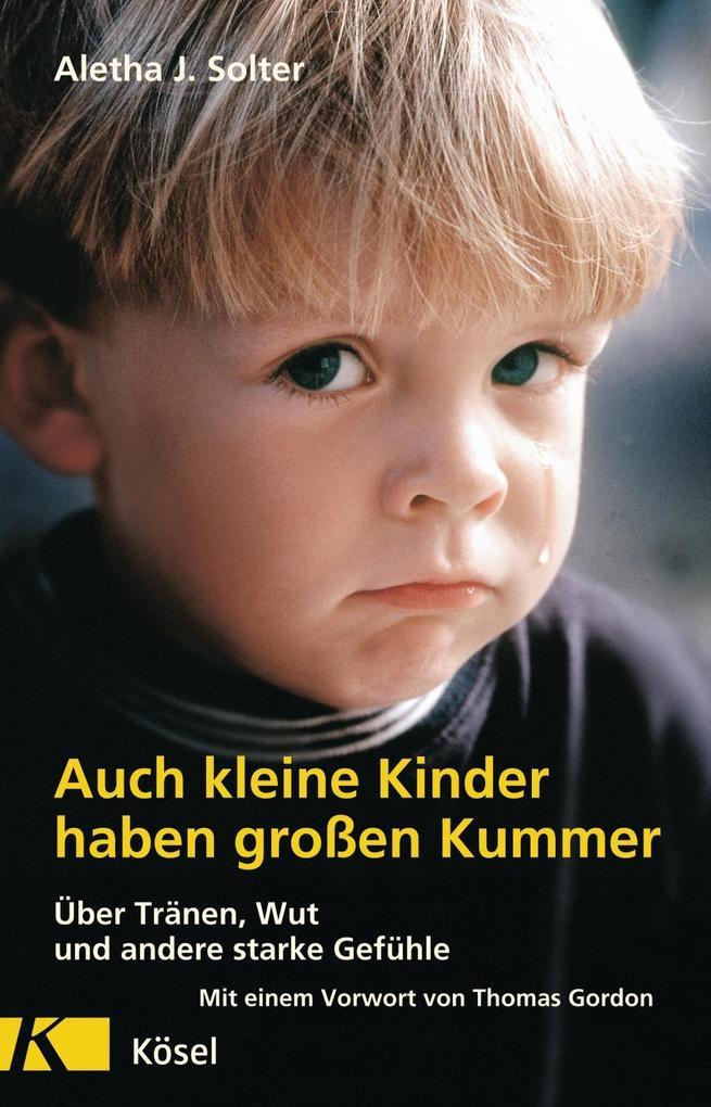 Auch kleine Kinder haben großen Kummer als Buch