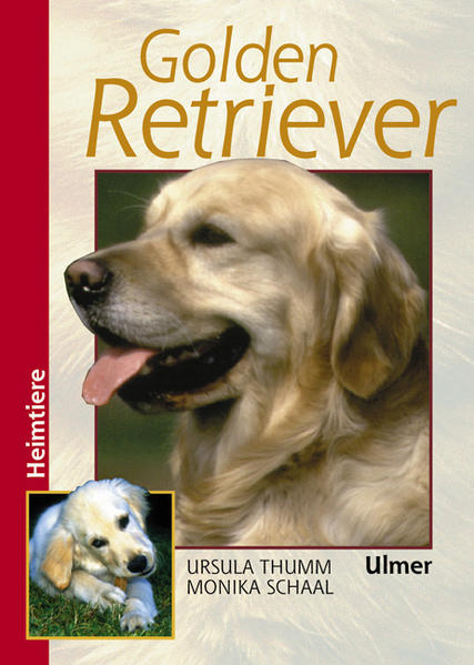 Golden Retriever als Buch