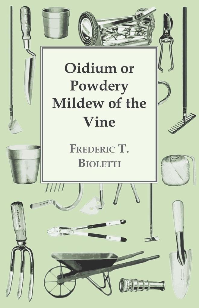 Oidium or Powdery Mildew of the Vine als Taschenbuch von Frederic T. Bioletti - Grant Press
