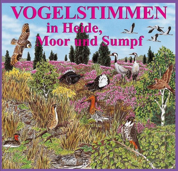 Vogelstimmen 5 in Heide, Moor und Sumpf. CD als Hörbuch