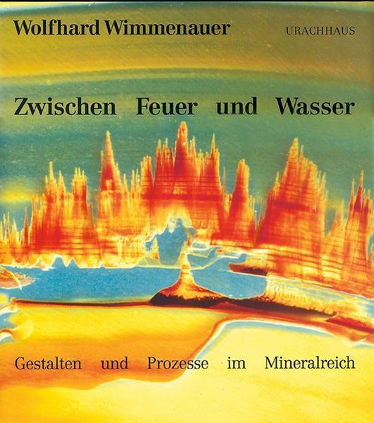 Zwischen Feuer und Wasser als Buch