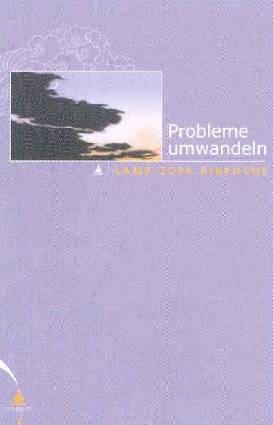 Probleme umwandeln als Buch