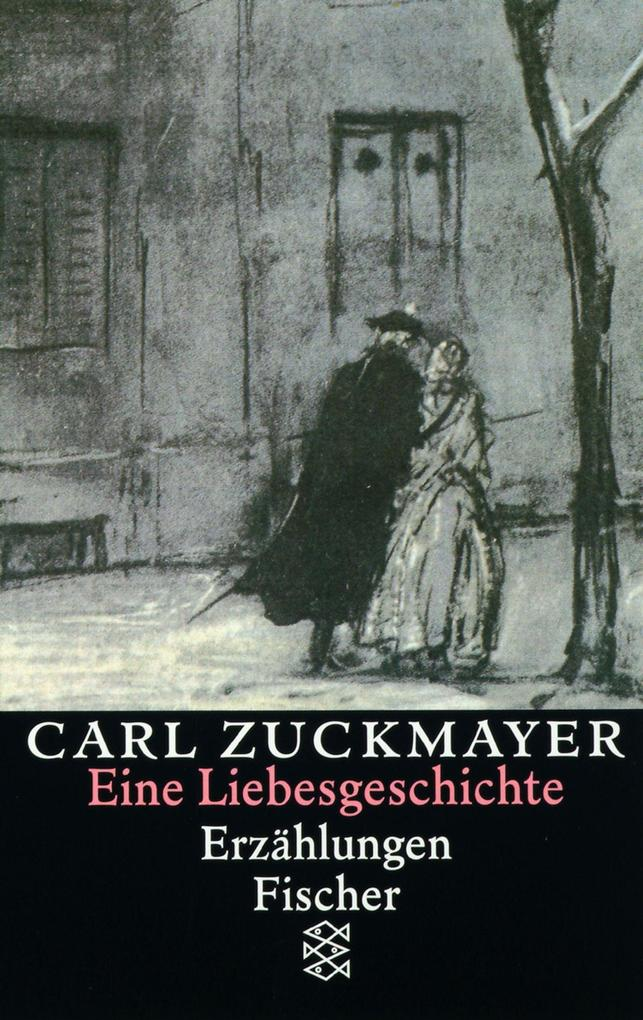 Eine Liebesgeschichte als Taschenbuch