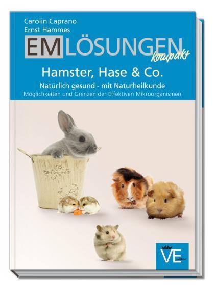 EM Lösungen kompakt als Buch (kartoniert)