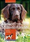 Kleiner Münsterländer