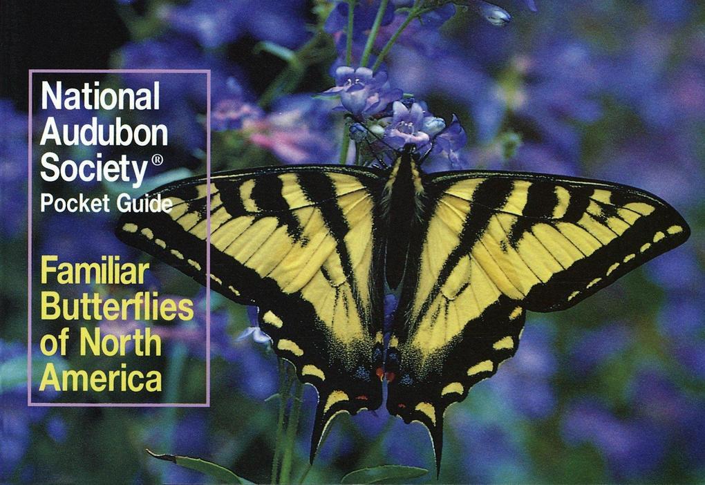 Familiar Butterflies als Taschenbuch