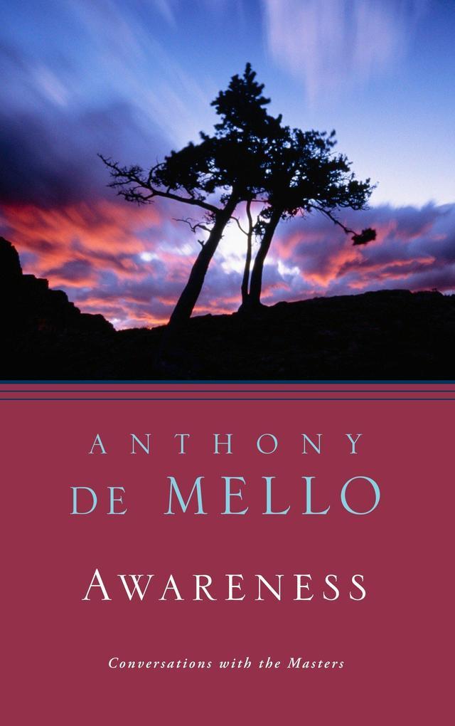 Awareness: Perils & Opportunities of Reality als Taschenbuch