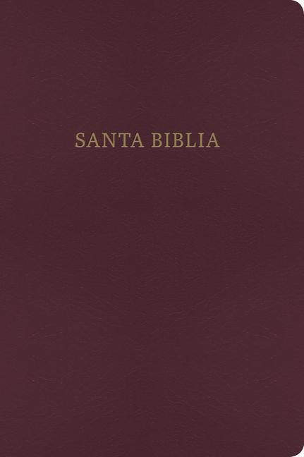 Bilingual Bible-PR-RV 1960/KJV als Buch