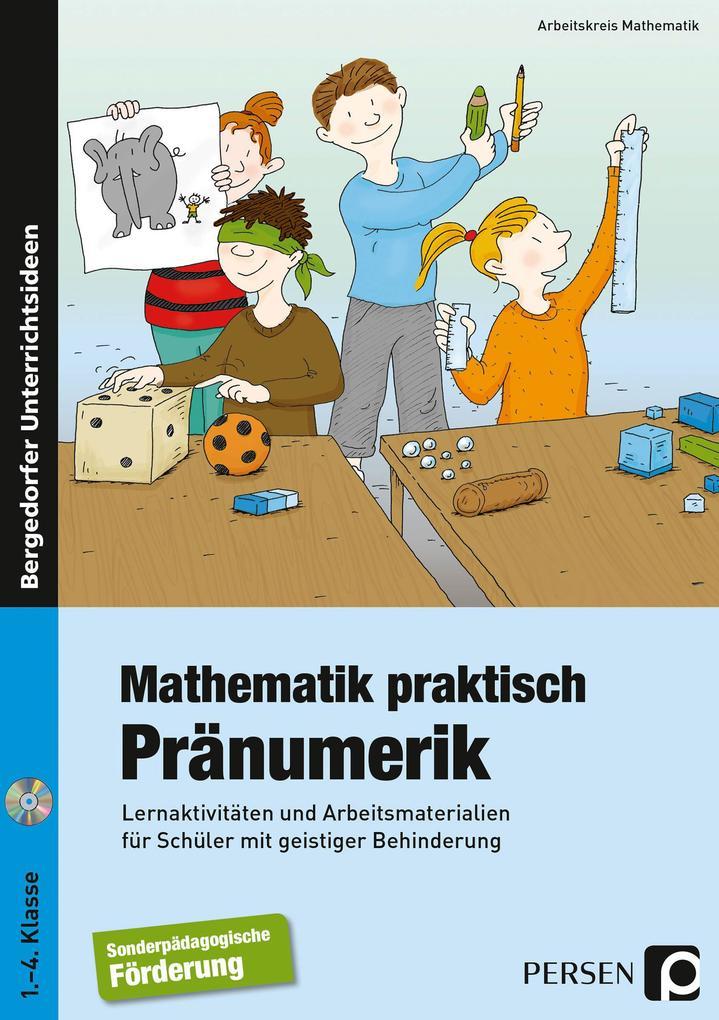 Mathematik praktisch: Pränumerik als Buch (gebunden)