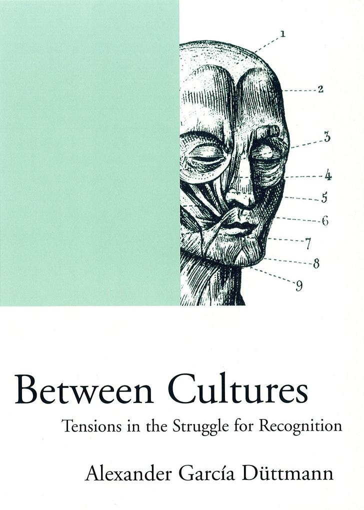 Between Cultures: Tensions in the Struggle for Recognition als Taschenbuch