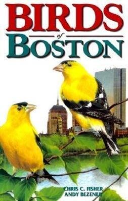 Birds of Boston als Taschenbuch