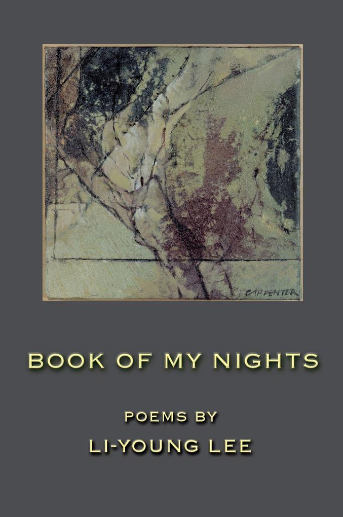 Book of My Nights als Taschenbuch