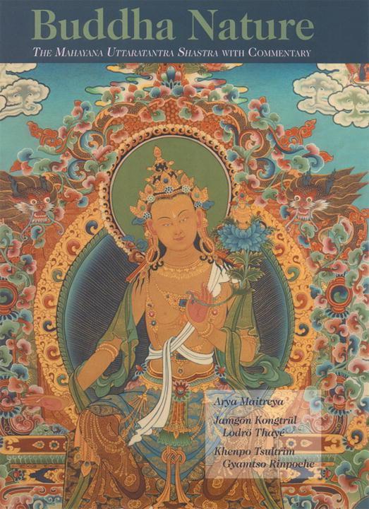 Buddha Nature als Buch