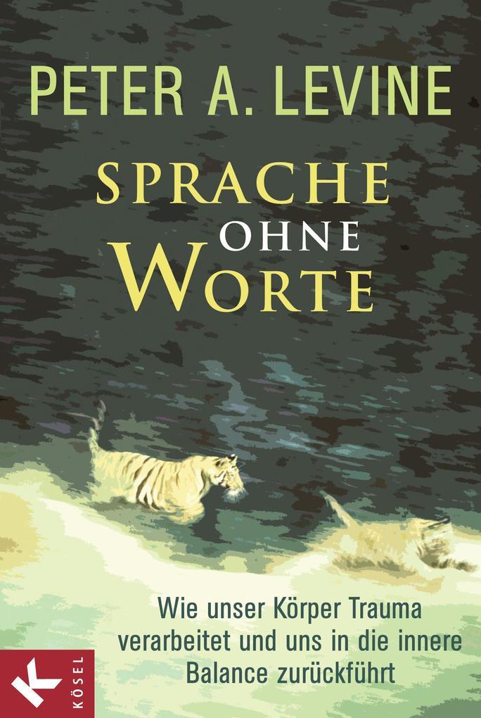 Sprache ohne Worte als eBook