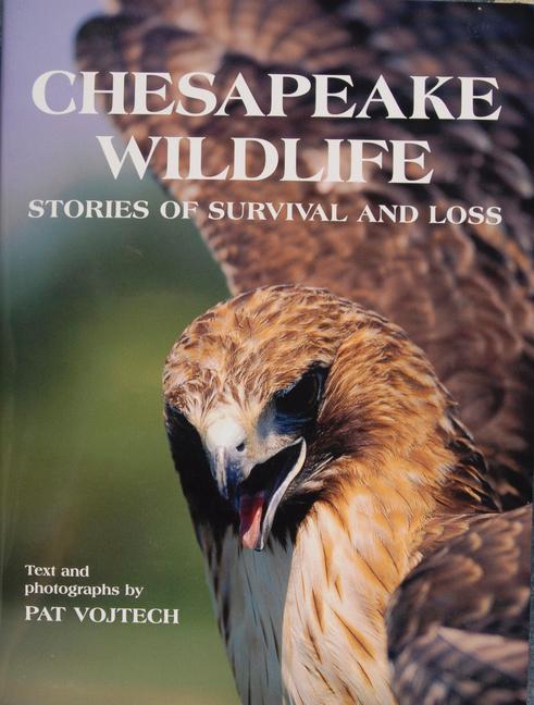 Chesapeake Wildlife als Buch