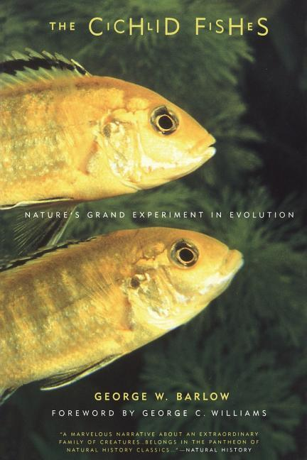 The Cichlid Fishes: Nature's Grand Experiment in Evolution als Taschenbuch