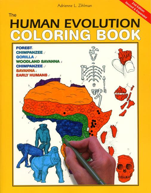 The Human Evolution Coloring Book, 2nd Edition als Taschenbuch