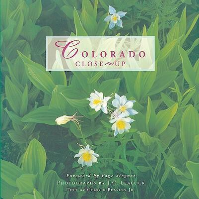 Colorado Close-Up als Taschenbuch