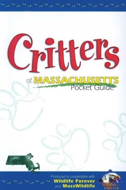 Critters of Massachusetts Pckt als Taschenbuch