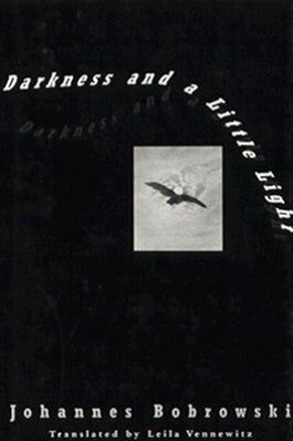 Darkness and a Little Light als Buch