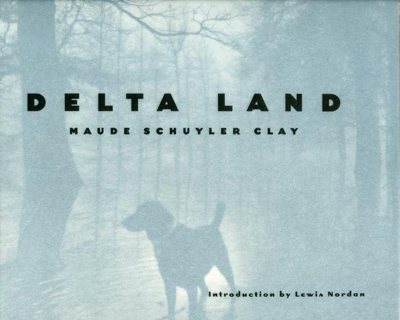 Delta Land als Buch