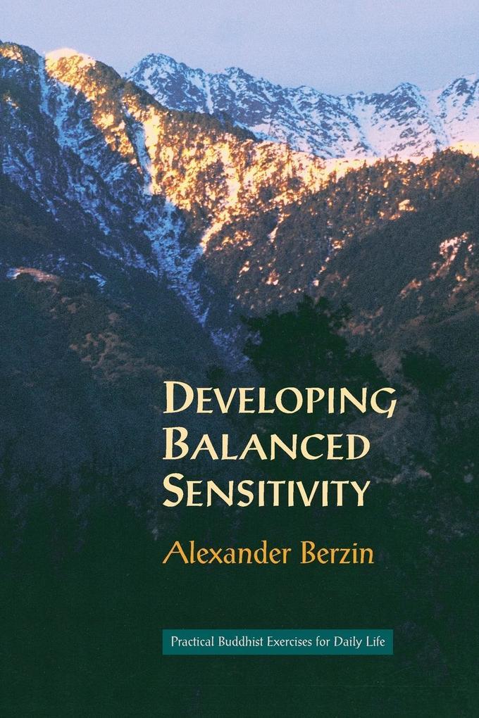 Developing Balanced Sensitivity als Taschenbuch