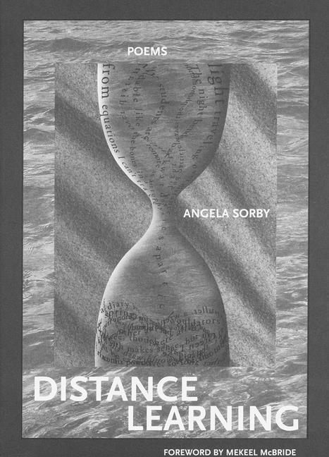 Distance Learning als Buch (gebunden)