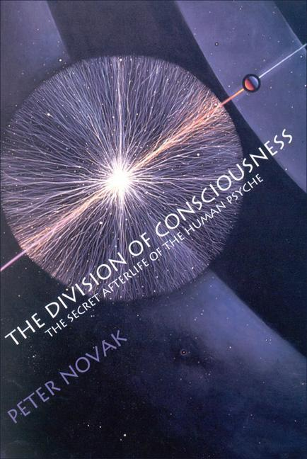 The Division of Consciousness: The Secret Afterlife of the Human Psyche: The Secret Afterlife of the Human Psyche als Taschenbuch
